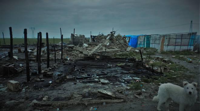 Boreano, dopo gli incendi degli scorsi mesi