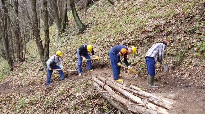 Lavoratori forestali