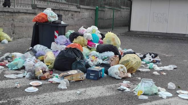 Rifiuti a terra (Foto da pagina fb  Potenza Denuncia)