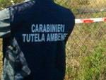 Noe Carabinieri
