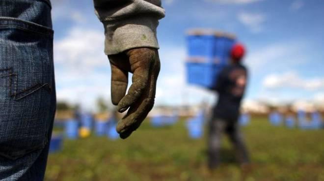Migranti nei campi