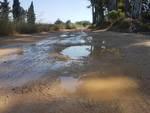 Strada foce Bradano
