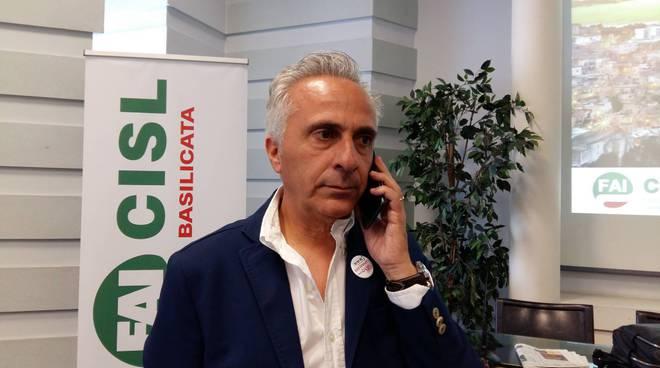 Vincenzo Cavallo, Fai Cisl