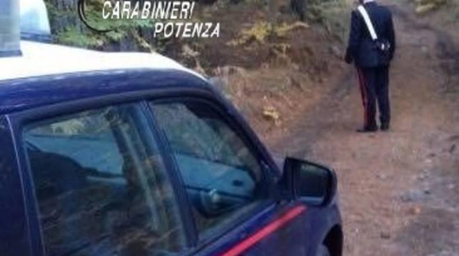 Carabinieri nel bosco