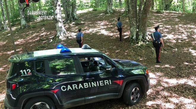 Carabinieri bosco Abriola