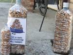 Raccolta mozziconi di sigaretta a Nova Siri