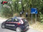 Ricerche dei carabinieri sul Pollino