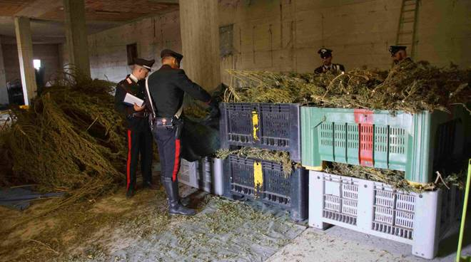 Droga sequestrata dai carabinieri