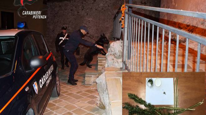 Sequestro droga Francavilla in Sinni