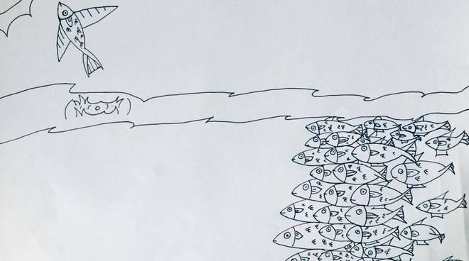 Sardine. Disegno di Gabin Dante