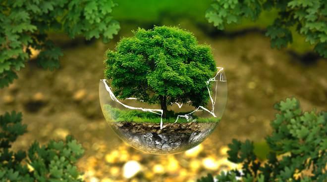 Tutela dell'ambiente