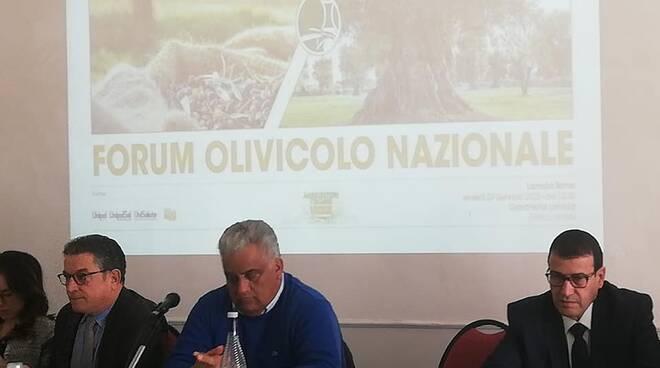 Forum Olivicolo Lamezia Terme