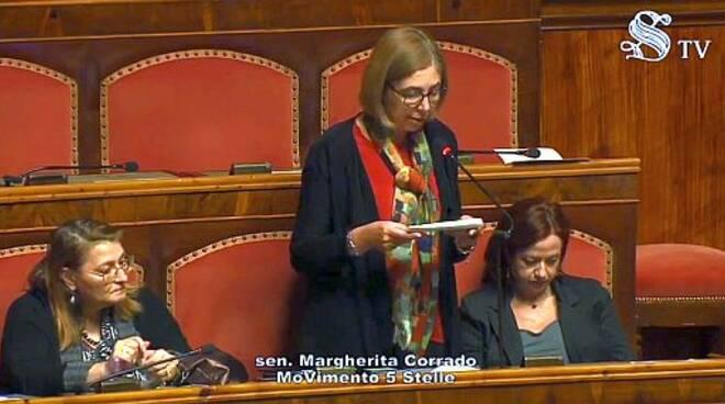 Margherita Corrado