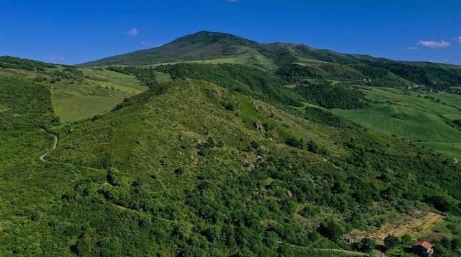 Monte Crugname, Vulture