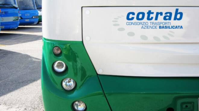 Bus Cotrab