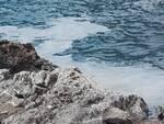 Schiuma bianca Acquafredda Maratea