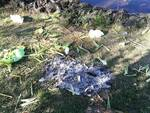 Immondizia oasi Pantano, Pignola (Foto Gerry Pietrafesa)