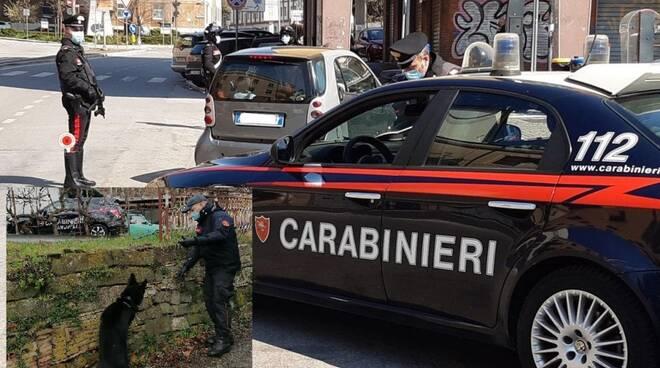 Cane antidroga carabinieri