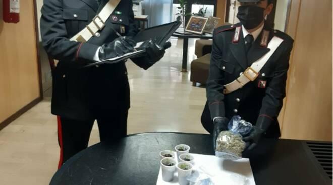 Carabinieri Matera con droga sequestrata