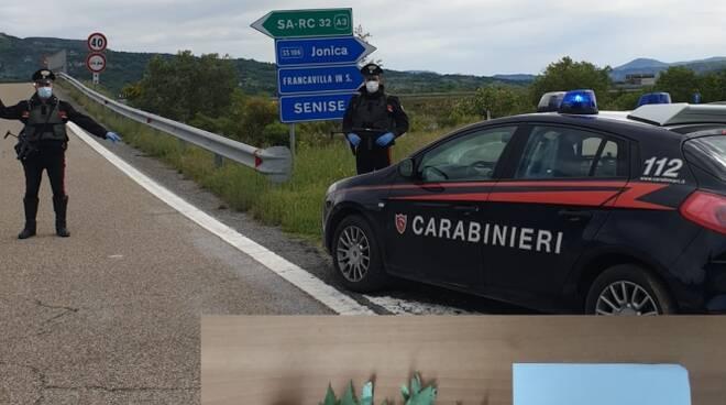 Carabinieri Senise e droga sequestrata