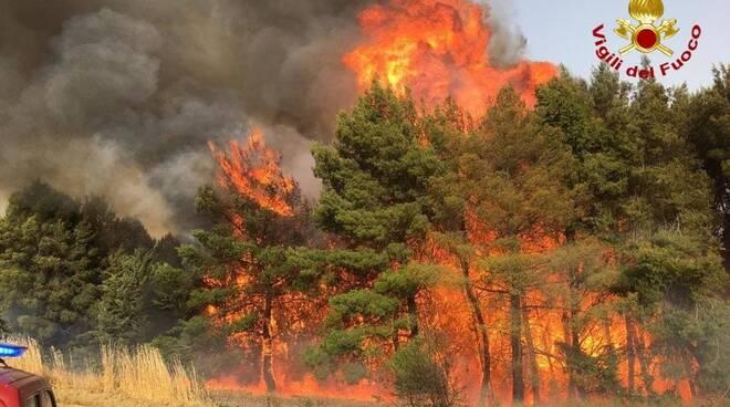 incendio montemilone
