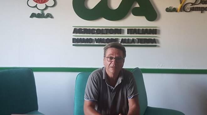 Leonardo Moscaritolo